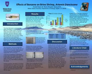 Effects of Benzene on Brine Shrimp,  Artemia franciscana