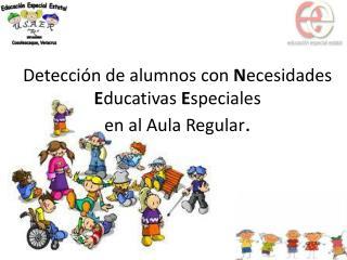 Detección de alumnos con  N ecesidades  E ducativas  E speciales  en al Aula Regular .