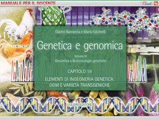 Tabella 19.1 Esempi di enzimi di restrizione con indicazioni relative all organismo di origine e alla sequenza di ricono