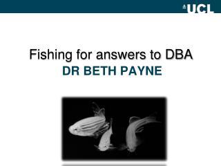 DR Beth PAYNE
