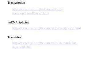 dnalc/resources/3d/13-transcription-advanced.html