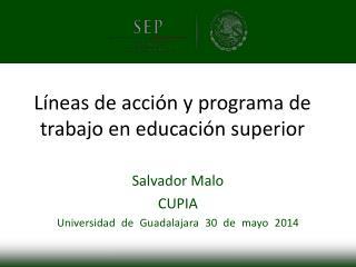 Líneas de acción y programa de trabajo en educación superior
