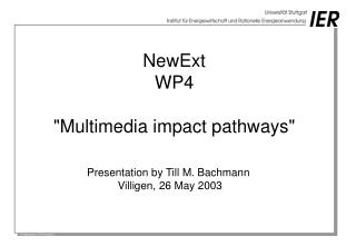 "NewExt WP4 ""Multimedia impact pathways"""
