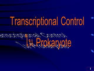 Transcriptional Control  ??  Prokaryote