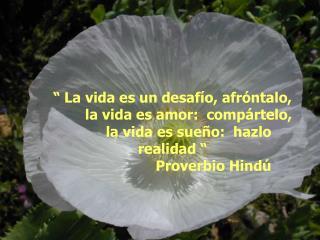 La vida es un desaf o, afr ntalo,  la vida es amor:  comp rtelo,  la vida es sue o:  hazlo realidad                Pro