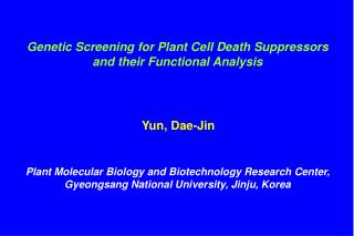 Genetic Screening for Plant Cell Death Suppressors and their Functional Analysis