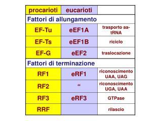 Passaggi dell'inizio di traduzione Formazione complesso 43S