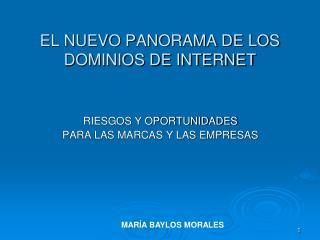 EL NUEVO PANORAMA DE LOS DOMINIOS DE INTERNET