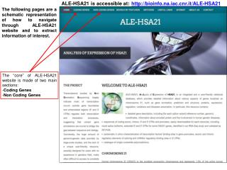 bioinfo.na.iacr.it/ALE-HSA21