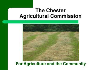 The Chester  Agricultural Commission