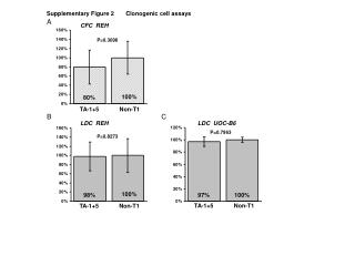 Supplementary Figure 2       Clonogenic cell assays