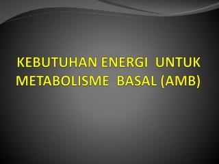 KEBUTUHAN ENERGI  UNTUK METABOLISME  BASAL (AMB)