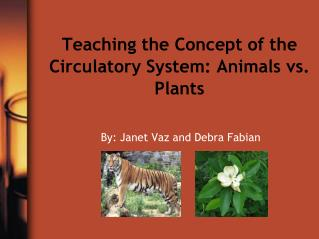 Teaching the Concept of the Circulatory System: Animals vs. Plants