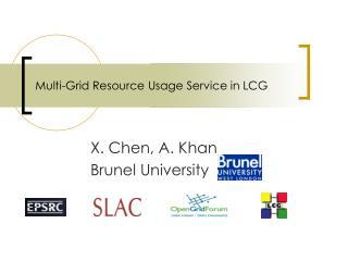 Multi-Grid Resource Usage Service in LCG