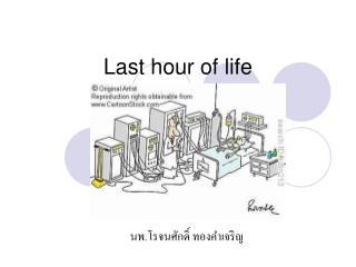 Last hour of life