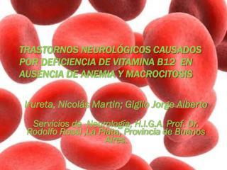 Irureta, Nicolás Martin; Giglio Jorge Alberto