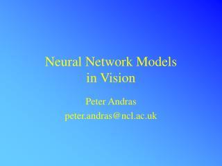Neural Network Models  in Vision