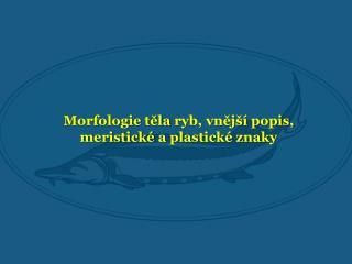 Morfologie t?la  ryb, vn?j�� popis,  meristick�  a plastick� znaky