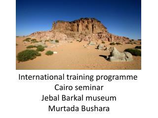 International training programme  Cairo seminar Jebal Barkal museum Murtada Bushara