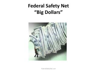 "Federal Safety Net ""Big Dollars"""