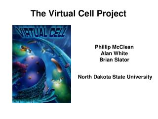 The Virtual Cell Project