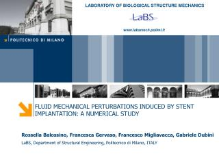 FLUID MECHANICAL PERTURBATIONS INDUCED BY STENT IMPLANTATION: A NUMERICAL STUDY