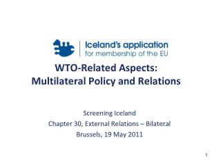 WTO-Related Aspects: Multilateral Policy and Relations
