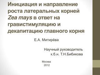 Е.А.  Митирёва Научный руководитель к.б.н.  Т.Н.Бибикова Москва  2012