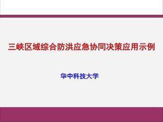 三峡区域综合防洪应急协同决策应用示例