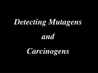 Detecting Mutagens and Carcinogens