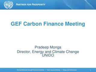 GEF Carbon Finance Meeting
