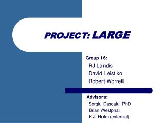 PROJECT:  LARGE