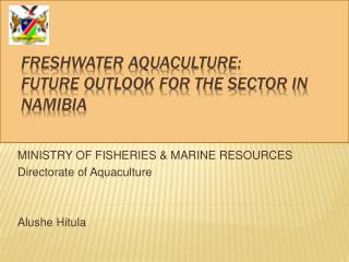 Freshwater Aquaculture:  Future outlook for the sector in Namibia