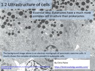 1 .2 Ultrastructure of cells