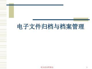 电子文件归档与档案管理