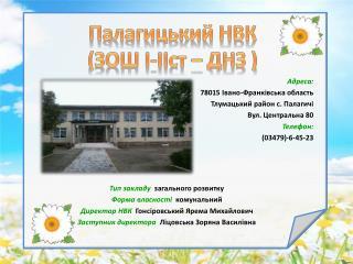 Палагицький  НВК (ЗОШ  І-ІІст  – ДНЗ )