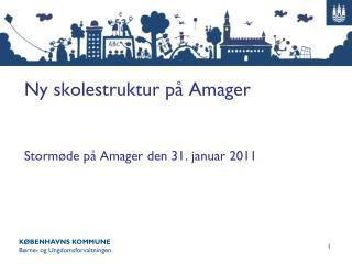 Ny skolestruktur på Amager Stormøde på Amager den 31. januar 2011