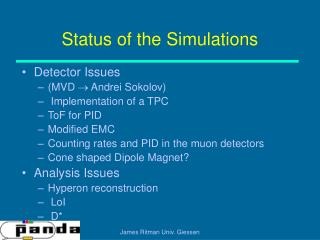 Status of the Simulations