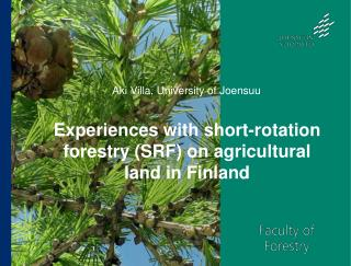 Experiences with short-rotation forestry (SRF) on agricultural land in Finland