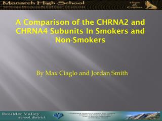 A Comparison of the CHRNA2 and CHRNA4 Subunits In Smokers and Non-Smokers