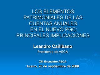 LOS ELEMENTOS PATRIMONIALES DE LAS CUENTAS ANUALES  EN EL NUEVO PGC:  PRINCIPALES IMPLICACIONES
