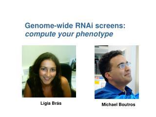 Genome-wide RNAi screens:  compute your phenotype