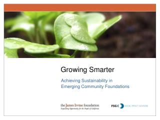 Achieving Sustainability in Emerging Community Foundations