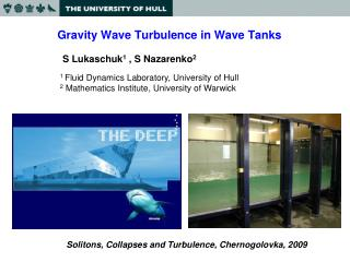 Gravity Wave Turbulence in Wave Tanks