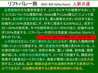 リフトバレー熱 ( RVF:  Rift Valley fever)  人獣共通