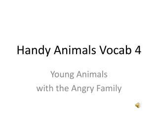 Handy Animals  Vocab  4