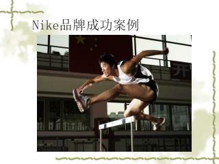 Nike 品牌成功案例