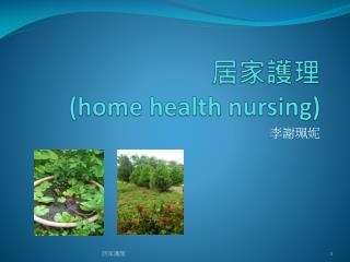 居家護理 (home health nursing)