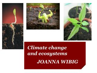 Climate change and ecosystems 	JOANNA WIBIG