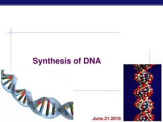 Synthesis of DNA
